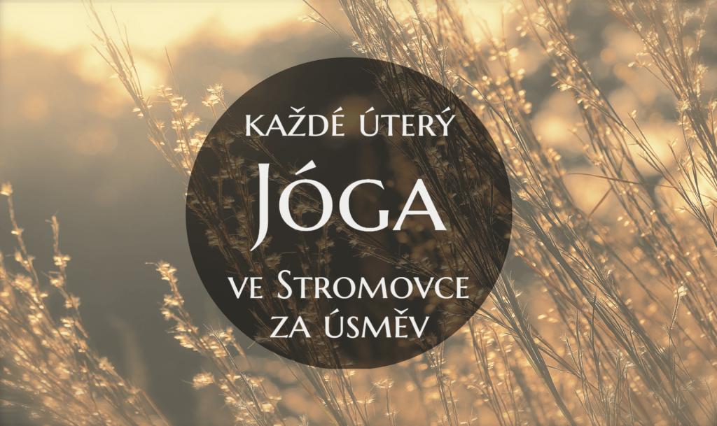 jóga-ve-Stromovce-zdarma